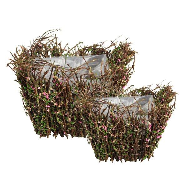 Henslee 2-Piece Moss Pot Planter Set by August Grove
