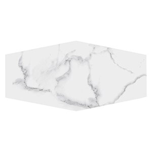 Winter Solstice 9.5 x 19.25 Porcelain Field Tile in White by Kellani