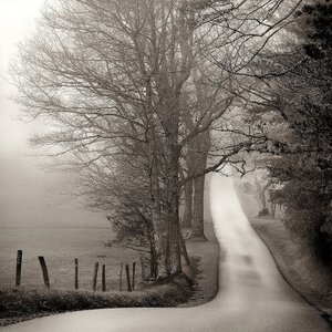 'Cades Cove Loop' Photographic Print on Canvas by East Urban Home