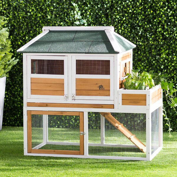 Enrique Chicken Coop with Herb Planter by Archie &