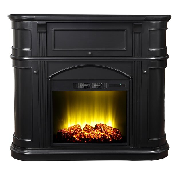 Madilyn 48 Electric Fireplace Insert by Charlton Home