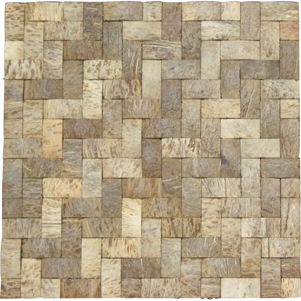 0.75 x 1.5 Coconut Mosaic Tile in Matte Coconut and wood by Legion Furniture