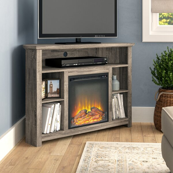 Darby Home Co TV Stand Fireplaces