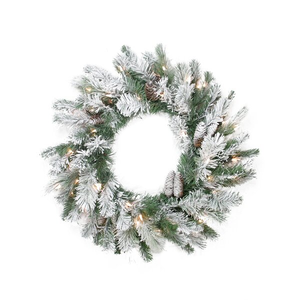 Pre-Lit Flocked Victoria Pine Artificial Christmas Wreath by Northlight Seasonal