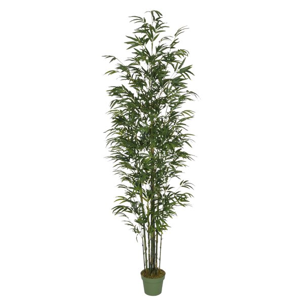 Dany Artificial Bamboo Tree in Pot by Bayou Breeze