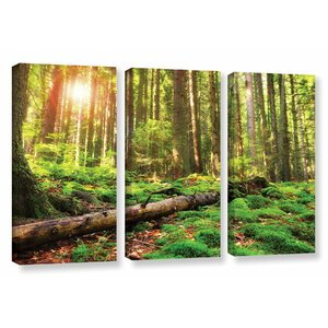 Back to Green 3 Piece Photographic Print on Wrapped Canvas Set by Darby Home Co