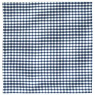Blue Checkered Tablecloth | Wayfair