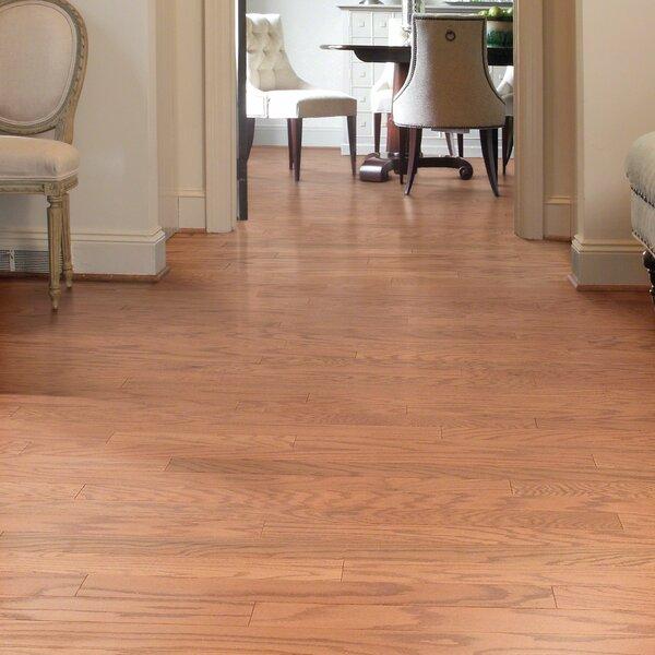 Lakeland 3-1/2 Engineered Red Oak Hardwood Flooring in Gainesville by Shaw Floors