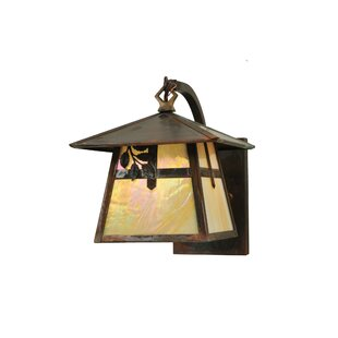 Searching for 1-Light Outdoor Wall Lantern By Meyda Tiffany