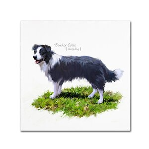 'Border Collie' Print on Canvas by Trademark Fine Art