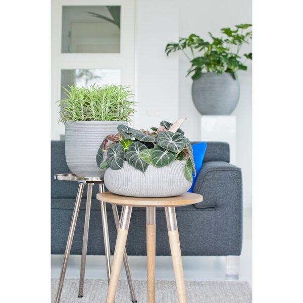 Edged Low Decorative Fiberstone Pot Planter by Pottery Pots