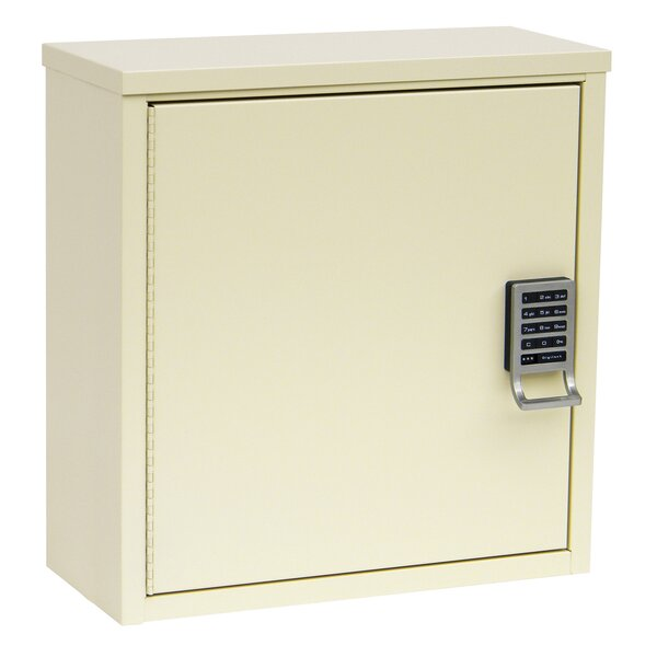 16 W x 16.75 H Wall Mounted Cabinet by Omnimed