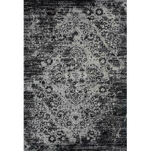 Paden Gray Indoor/Outdoor Area Rug