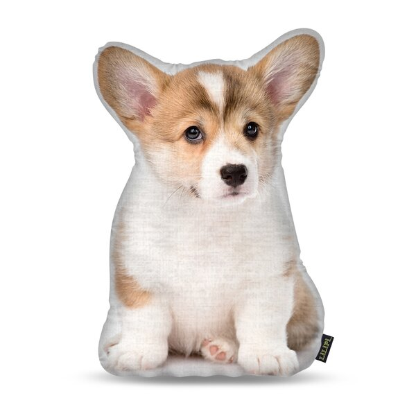Manzella Corgi Puppy Throw Pillow by Ebern Designs