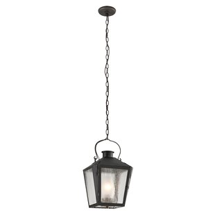 Reviews Adeline 1-Light Outdoor Hanging Lantern By Longshore Tides