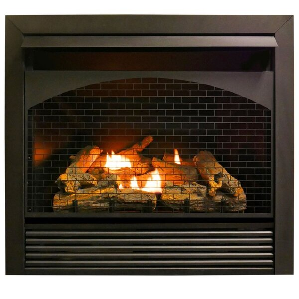 Heating Zero Clearance Vent Free Propane/Natural Gas Fireplace Insert By ProCom