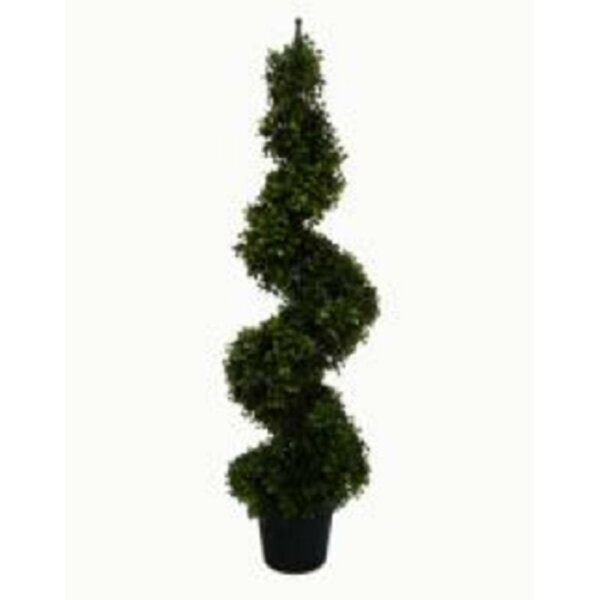 Shrub Decorative 36 Single Spiral Shaped Door Boxwood Topiary in Pot by The Holiday Aisle