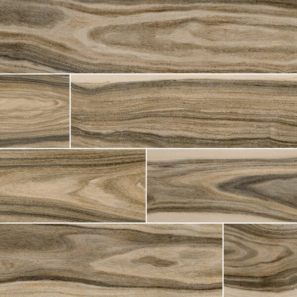 Dellano Deep Bark Polished 8 x 48 Porcelain Wood Look Tile in Brown by MSI