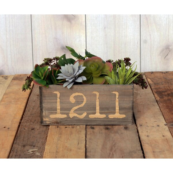 Lupton Personalized Wood Planter Box by Winston Porter