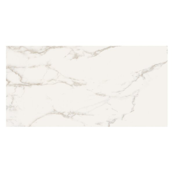 Marmi Pol 16 x 32 Porcelain Field Tile in Staturio Gold by Casa Classica