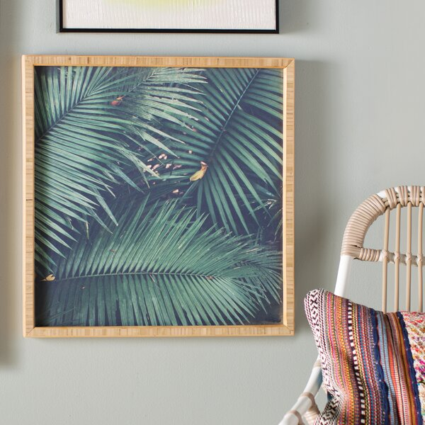 Rainforest Floor Framed Photographic Print by Bay Isle Home