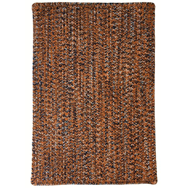 One-of-a-Kind Aukerman Hand-Braided Orange/Navy Indoor/Outdoor Area Rug by Isabelline