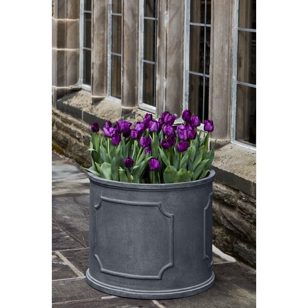 Minna XL Round Pot Planter by Darby Home Co