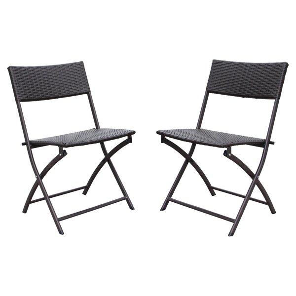 Maryanne Folding Resin Wicker Patio Chair (Set of 2) by Ivy Bronx Ivy Bronx