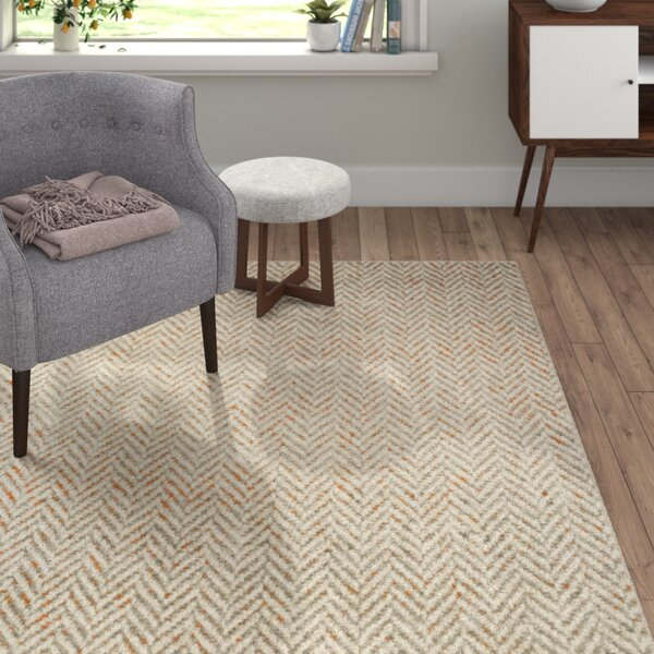 Burroughs Light Gray/Burnt Orange Area Rug by Langley Street