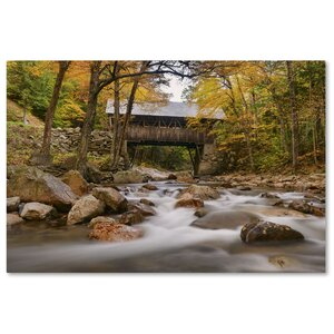 'The Flume Bridge' by Michael Blanchette Photographic Print on Wrapped Canvas by Trademark Fine Art