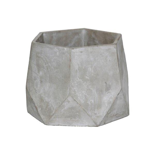 Sherita Hexagonal Flower Cement Pot Planter by Williston Forge