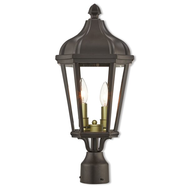 DeMotte Outdoor 2-Light Lantern Head by Darby Home Co