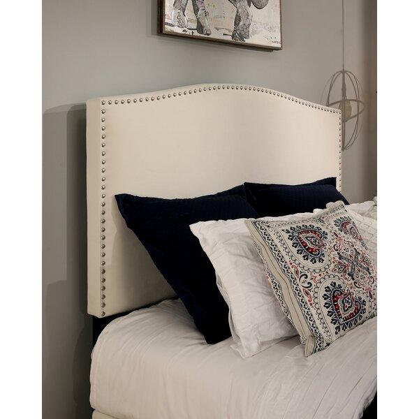 Almodovar 2 Drawer Upholstered Storage Platform Bed by Darby Home Co