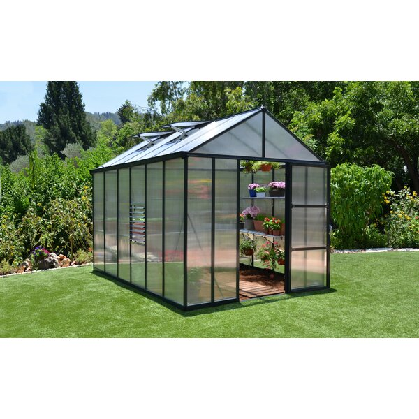 Glory 8 Ft. W x 12 Ft. D Greenhouse by Palram