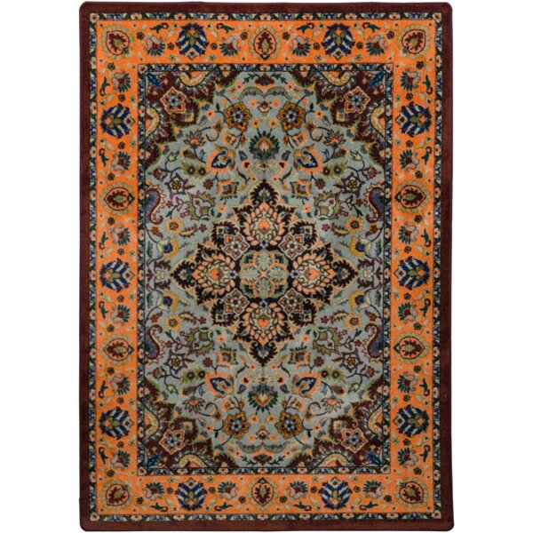 Robert Caine Montreal Canyon Area Rug by American Dakota