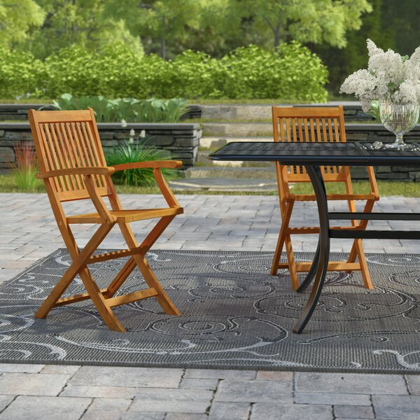 Cadsden Folding Patio Dining Chair (Set of 2) by Three Posts Three Posts