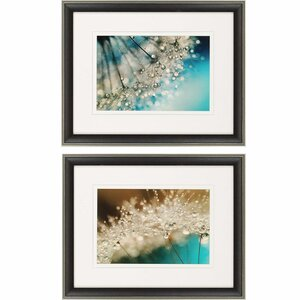 Smokey Sparkles 2 Piece Framed Photographic Print Set by Paragon