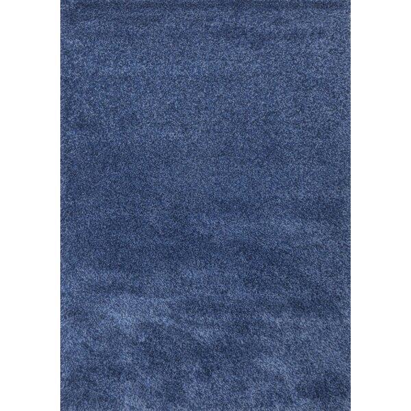 Super Shaggy Blue Area Rug by Samnm Trade