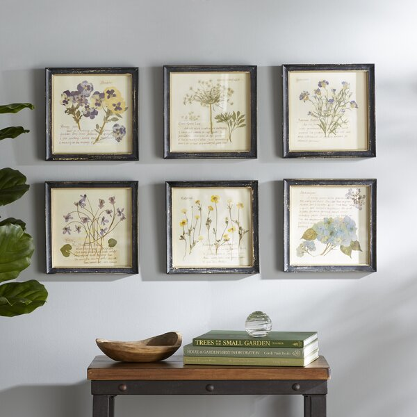 Pressed Flowers Framed Graphic Art Print by Birch Lane™