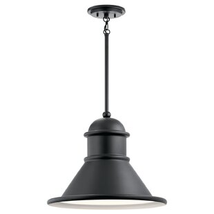 Where buy  Vivek 1-Light Outdoor Pendant By Gracie Oaks