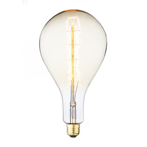 60W E26 Incandescent Edison Light Bulb by String Light Company