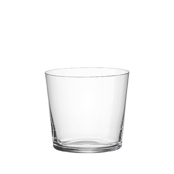 Elixir Whiskey 14 oz. Glass Cocktail Glasses (Set of 6) by RONA