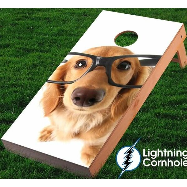 Golden Retriever with Glasses Cornhole Board by Lightning Cornhole