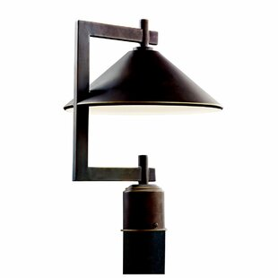Looking for Bush Outdoor 1-Light Lantern Head By Longshore Tides