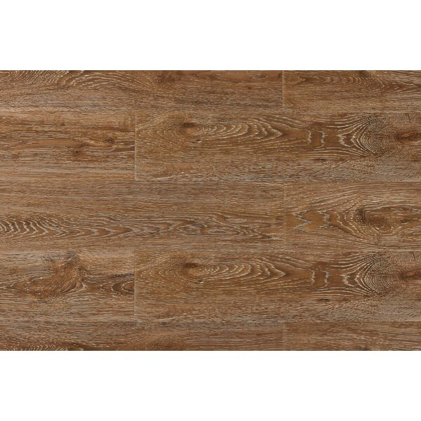 Archard 7 x 48 x 12mm Oak Laminate Flooring in Champagne by Serradon