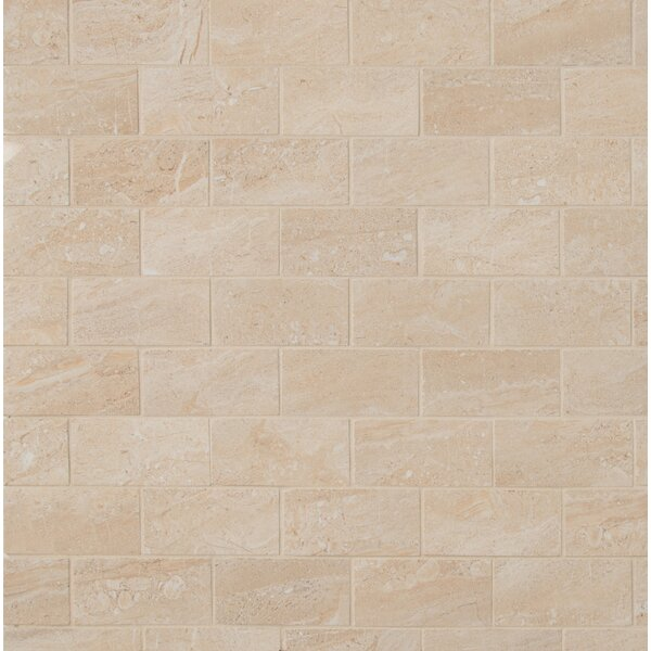 Aria Oro 2 x 4 Porcelain Mosaic Tile in Beige by MSI