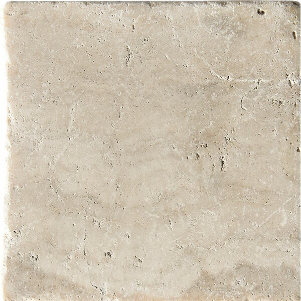 Philadelphia Tumbled 6 x 6 Travertine Field Tile in Beige by Parvatile