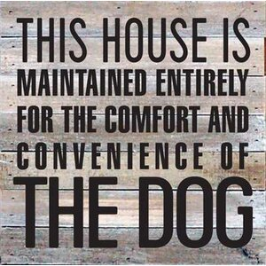 'This House is Maintained Entirely for - The Dog' Textual Art on Wood in White by Artistic Reflections
