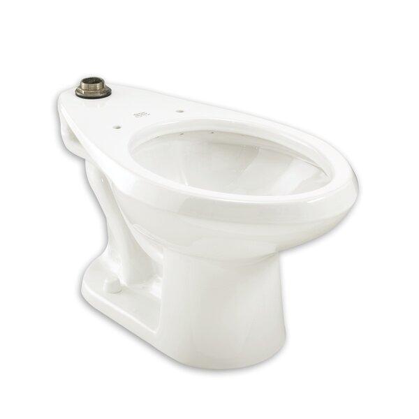Madera 1.28 GPF Elongated Toilet Bowl by American Standard