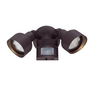 Best Mckeehan 2 Head LED Outdoor Spotlight By Ebern Designs
